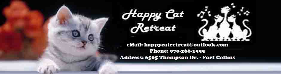Happy Cat Retreat